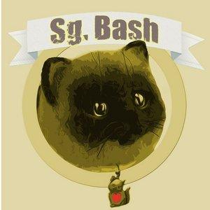 Avatar de Sg. Bash