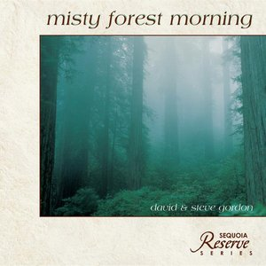Misty Forest Morning