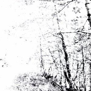 The White EP
