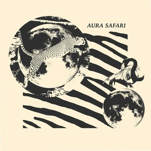 Avatar for aura safari