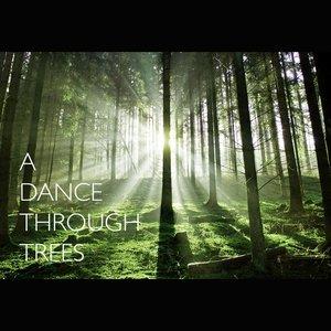 A Dance Through Trees
