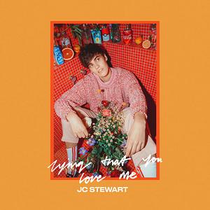 JC Stewart - Lying That You Love Me