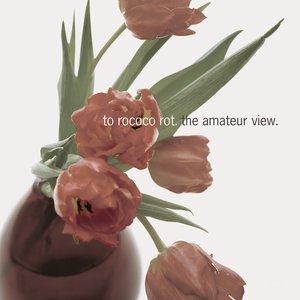 The Amateur View