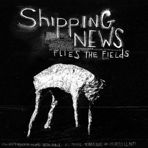 Flies the Fields