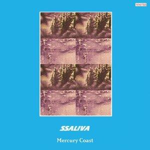 Mercury Coast