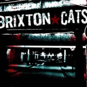 Brixton Cats