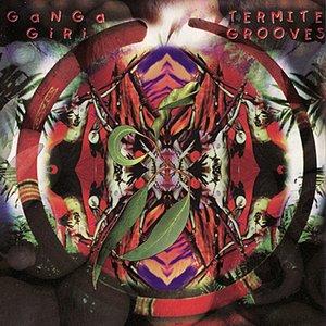 Termite Grooves