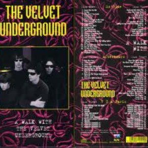 A Walk With the Velvet Underground