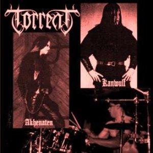 Awatar dla Torrent