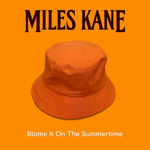 Blame It On The Summertime
