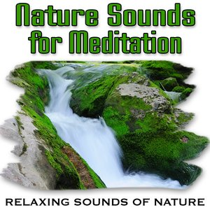 Nature Sounds for Meditation (Nature Sounds)