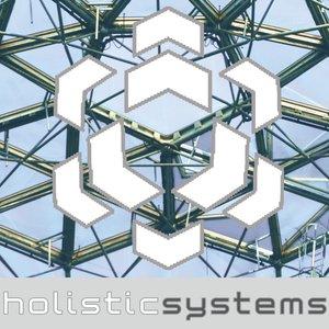 Avatar for Holistic Systems