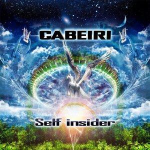 Self Insider