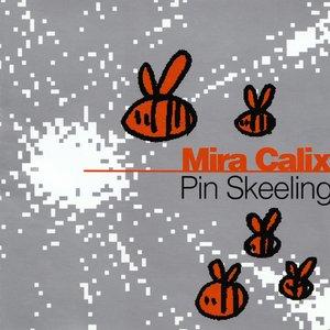 Pin Skeeling