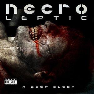 A Deep Sleep