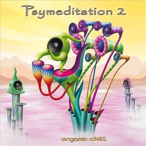 Psymeditation 2