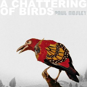 A Chattering Of Birds
