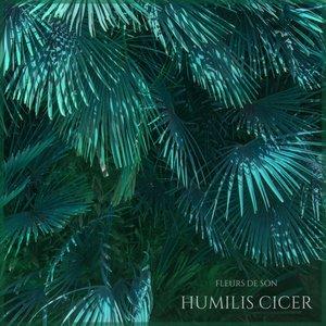 Humilis Cicer