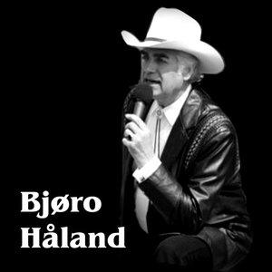Avatar for Bjøro Håland