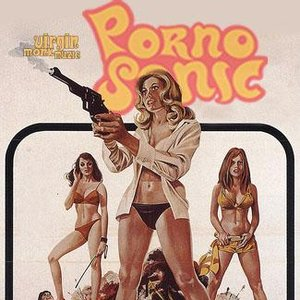 Image for 'Pornosonic'