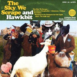Sound Pets (The Sky We Scrape / Hawkbit Split LP)