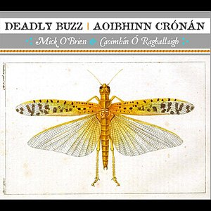 Deadly Buzz | Aoibhinn Crónán