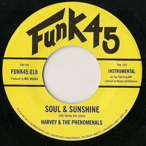 Soul & Sunshine / What Can I Do