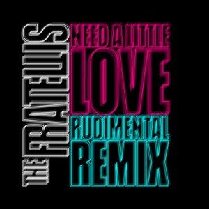 Need a Little Love (Rudimental Remix)