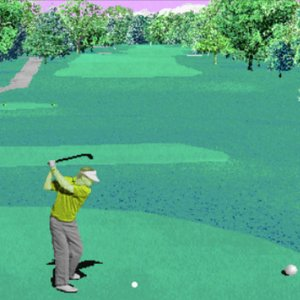 Avatar de US Golf 95