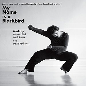 Music from and inspired by My Name is a Blackbird