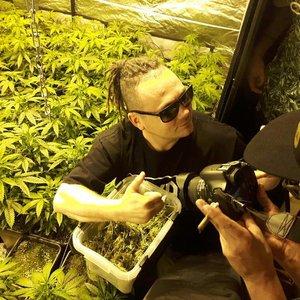 Avatar for Bilon HG