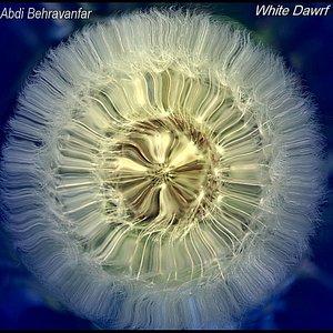 Kootooleh Sefid (White Dwarf)
