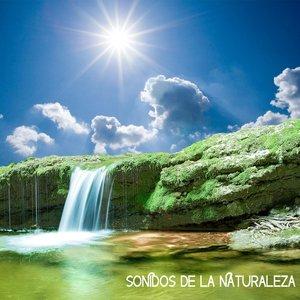 Avatar for Sonidos de la Naturaleza Relajacion