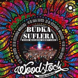 Cień wielkiej góry live - Woodstock Festival Poland 2014