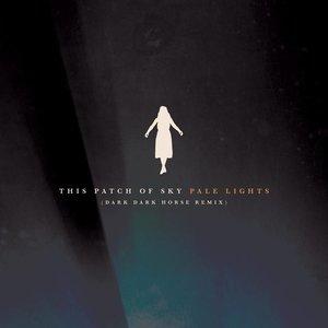 Pale Lights (Dark Dark Horse Remix) [feat. DARK DARK HORSE] - Single