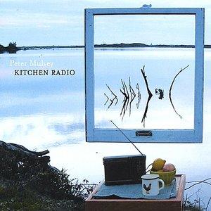 Kitchen Radio