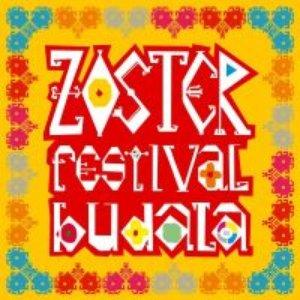 Festival budala