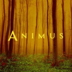 Animus II
