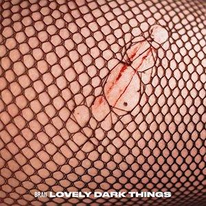 Lovely Dark Things