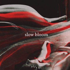 Slow Bloom
