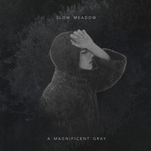 A Magnificent Gray