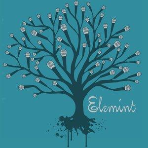 Avatar de Elemint