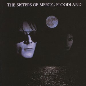 This Corrosion - (Remastered) by Sisters of Mercy