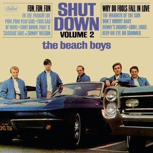 Shut Down Volume 2