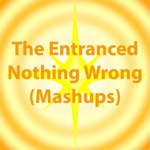 Image for 'Nothing Wrong (Mashups)'