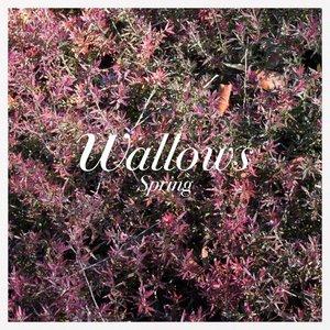 Wallows: Live at Third Man Records