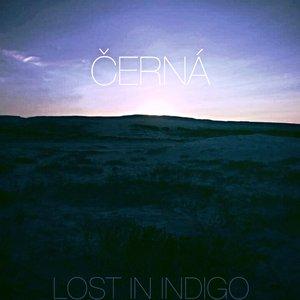 Lost In Indigo