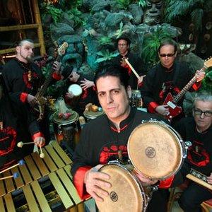 Avatar for The Tikiyaki Orchestra