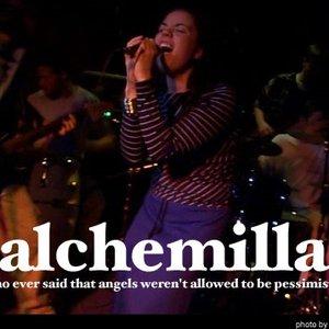 Avatar for Alchemilla