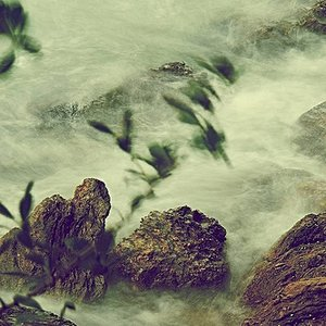 Avatar for Nature's Rhythms